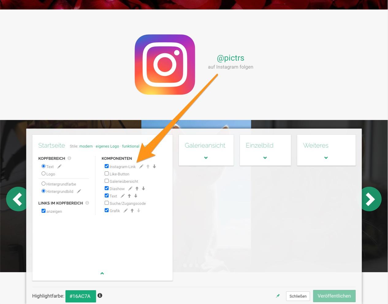 Pictrs-Shop mit Link zu Instagram auf der Startseite