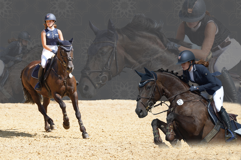 Fotocollagen von Pferd, Reiter und Hund